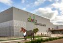 Un caballo abandonado en Abella, el único en asistir a la subasta por la adquisición del Centro Comercial