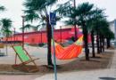 Vecinos de A Milagrosa comienzan a colocar hamacas en el nuevo palmeral de la Plaza para la llegada del buen tiempo
