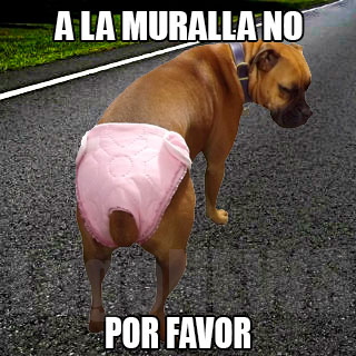 A la Muralla no, por favor