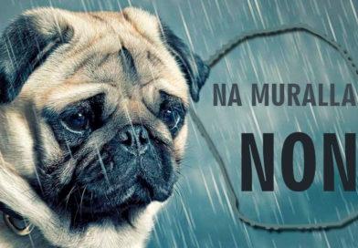 Ciudadanos publica una lista con nombres de perros que no podrán acceder a la muralla
