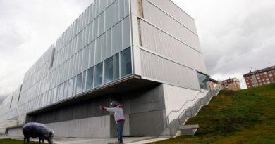 Un jabalí ataca a un gorrilla en la entrada del nuevo auditorio y los expertos hablan de 'señales del fin del mundo'