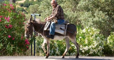 Los vecinos de A Garaballa que opten por quedarse a vivir en el barrio multiecológico deberán cambiar su vehículo por un burro